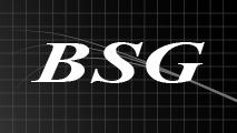 BSGブランク