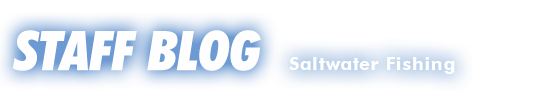 SALTスタッフブログ